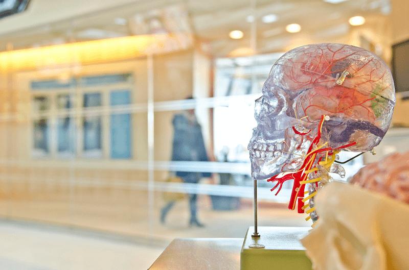 Ideas Brain